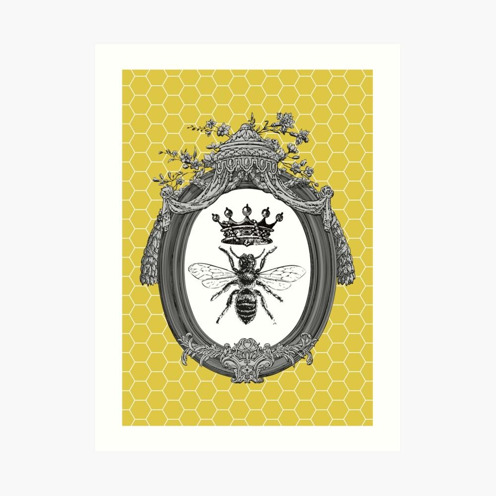 Queen Bee   Vintage Honey Bees   Honeycomb Patterns    Art Print