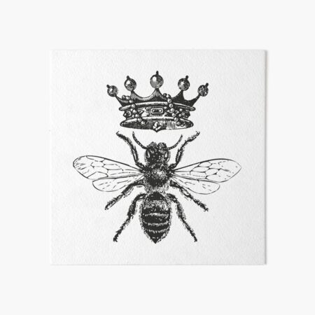 Queen Bee | Vintage Honey Bees | Black and White |  Art Board Print