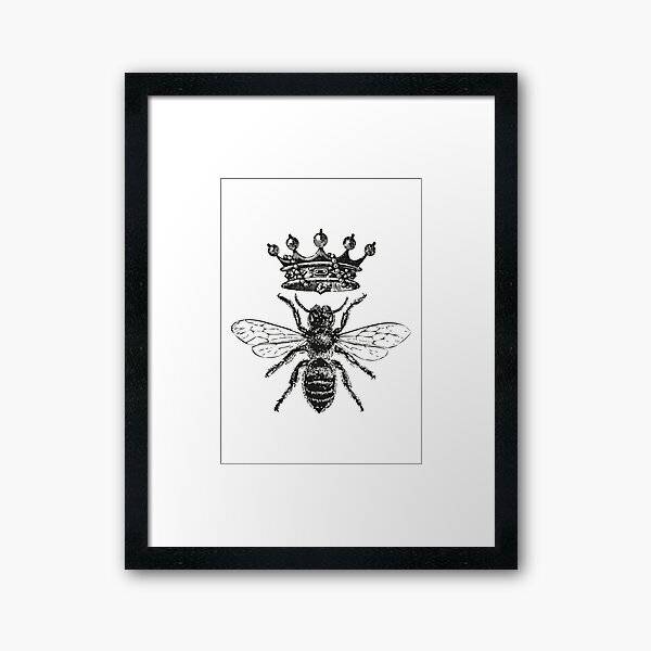 Queen Bee | Vintage Honey Bees | Black and White |  Framed Art Print