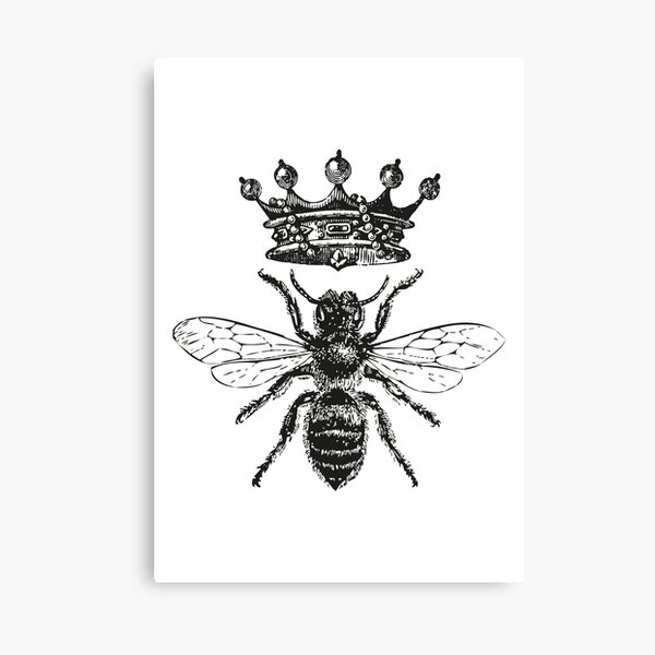 Queen Bee | Vintage Honey Bees | Black and White |  Canvas Print
