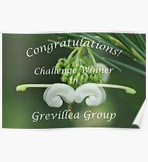 Grevillea Challenge Win Banner Poster