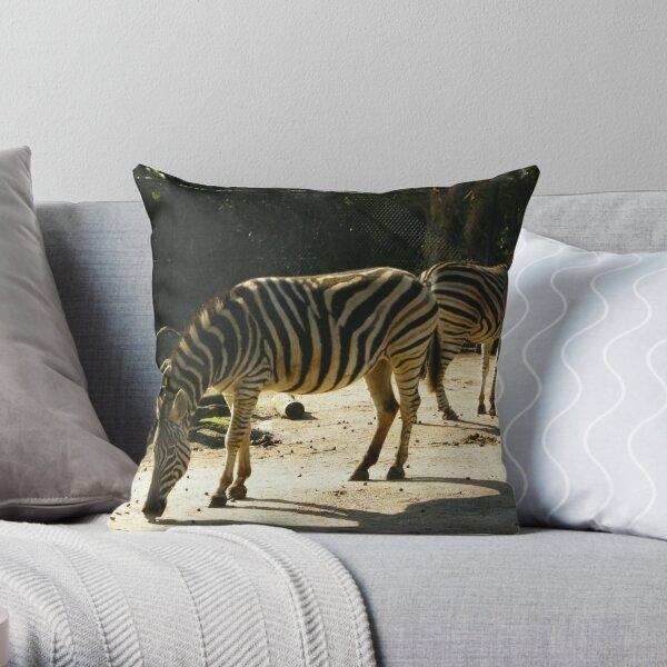zebras at the zoo Throw Pillow