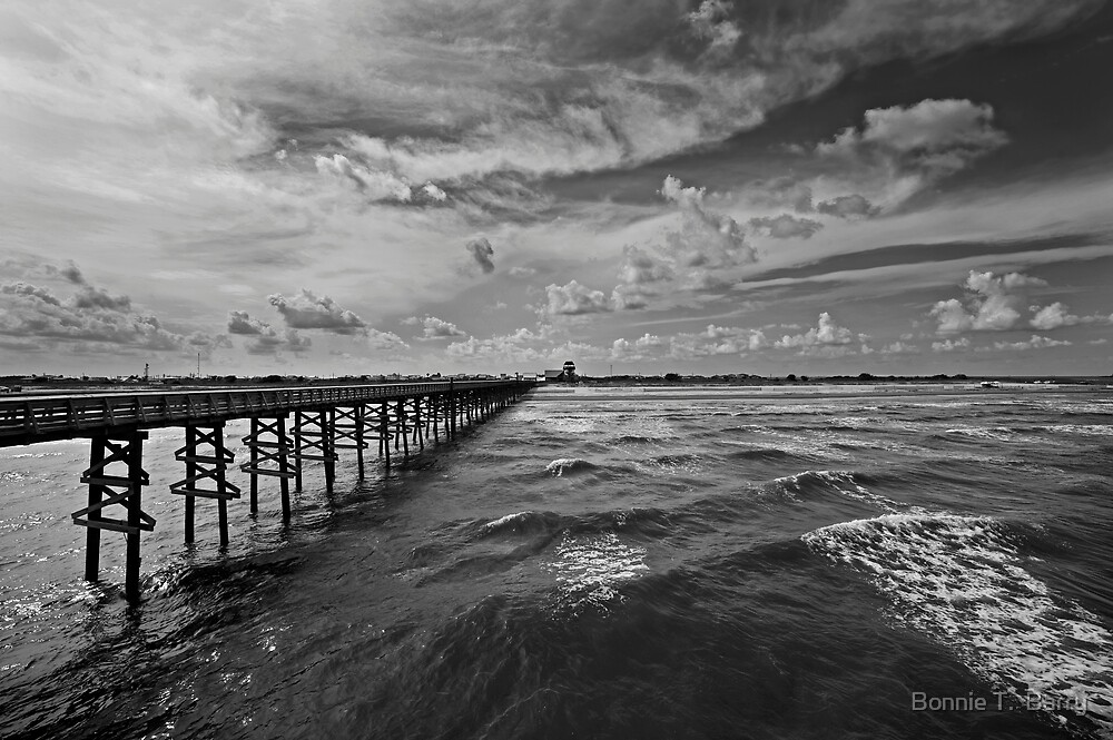 Heading to the shore by Bonnie T.  Barry