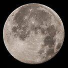 Full moon by DaleReynolds