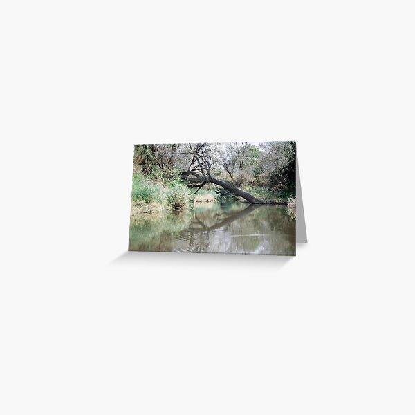 Water on the S39 'Timbivati drive'  Greeting Card