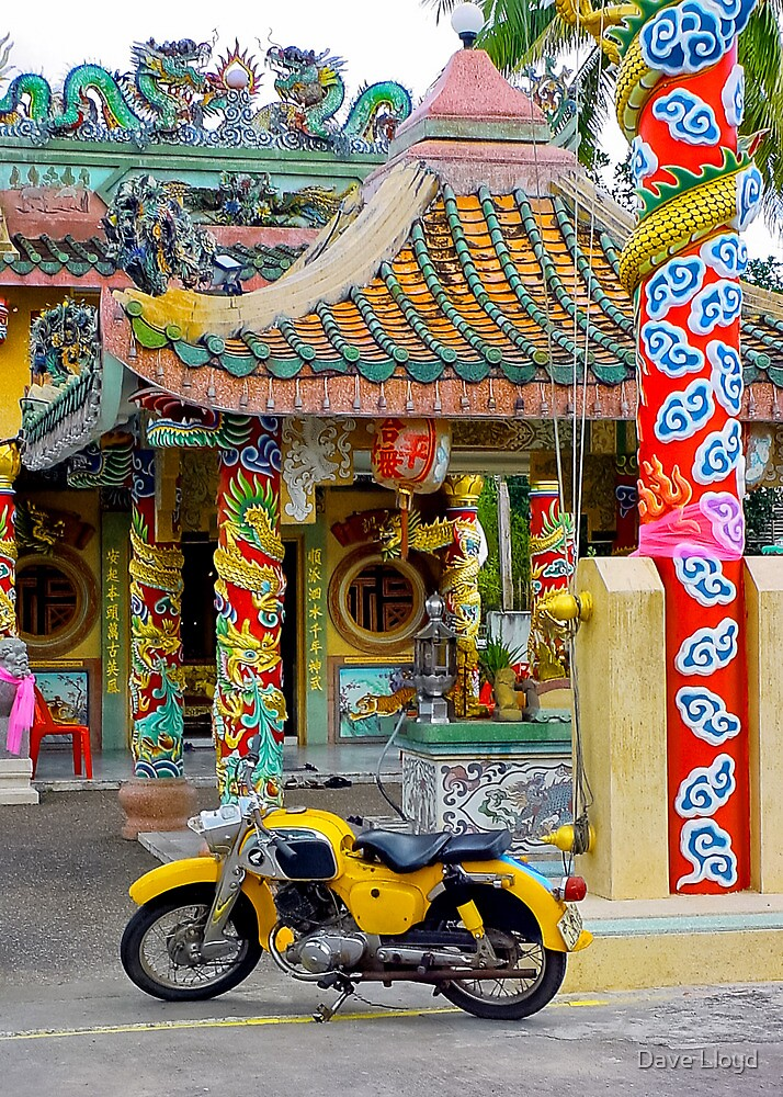 Temple And Yellow Bike by Dave Lloyd