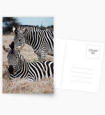 Alignment Postcards
