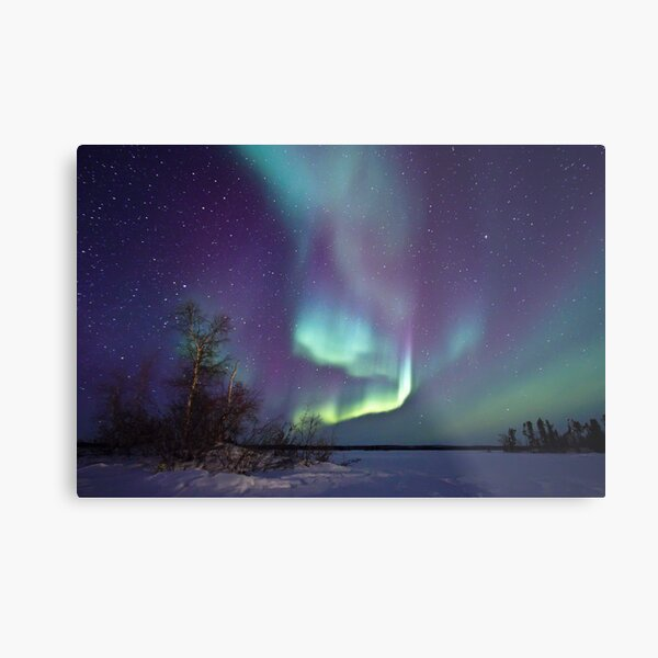 Aurora Borealis over Gordon Lake Metal Print