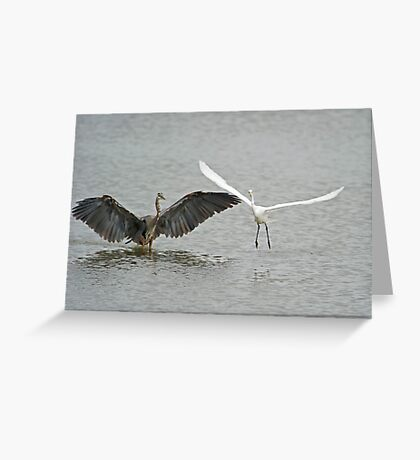 Intimidation  Greeting Card