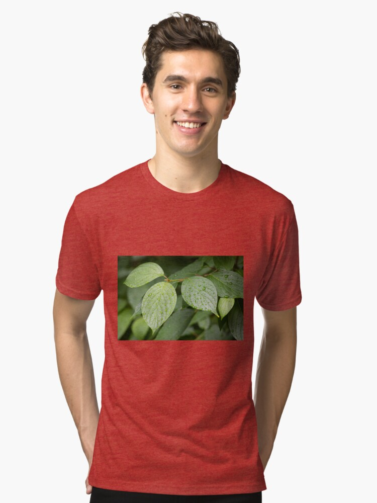 Alternate view of Water drops on green leaves after rain Tri-blend T-Shirt