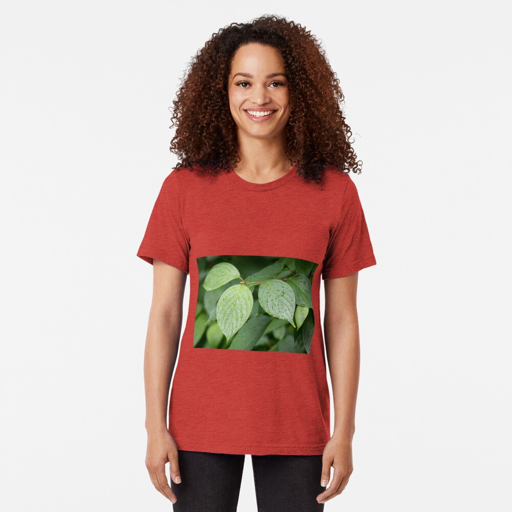 Water drops on green leaves after rain Tri-blend T-Shirt