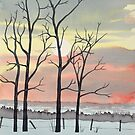 Winter Sunset by Cameron Porter