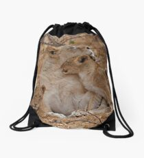 Lioness With Her Cubs Drawstring Bag