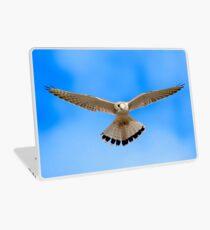 Nankeen Kestrel Laptop Skin