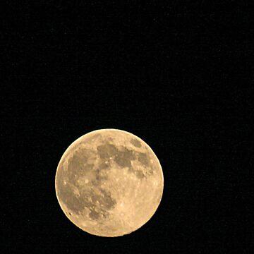2010 Harvest Moon by elisab
