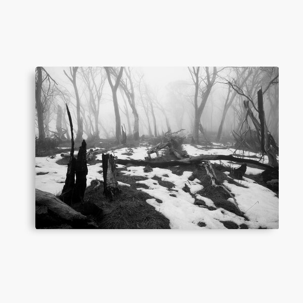 After the fire - B&W Canvas Print