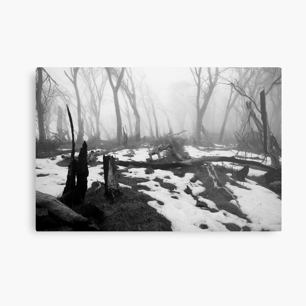 After the fire - B&W Metal Print