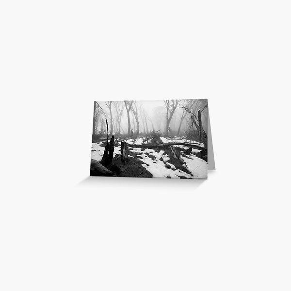 After the fire - B&W Greeting Card