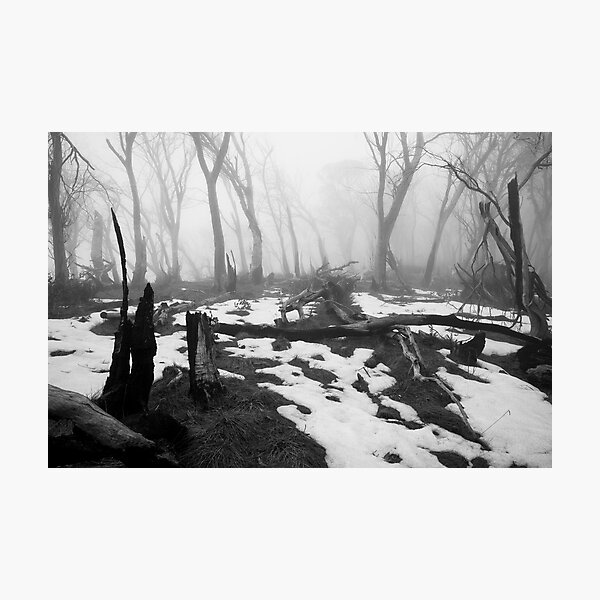 After the fire - B&W Photographic Print