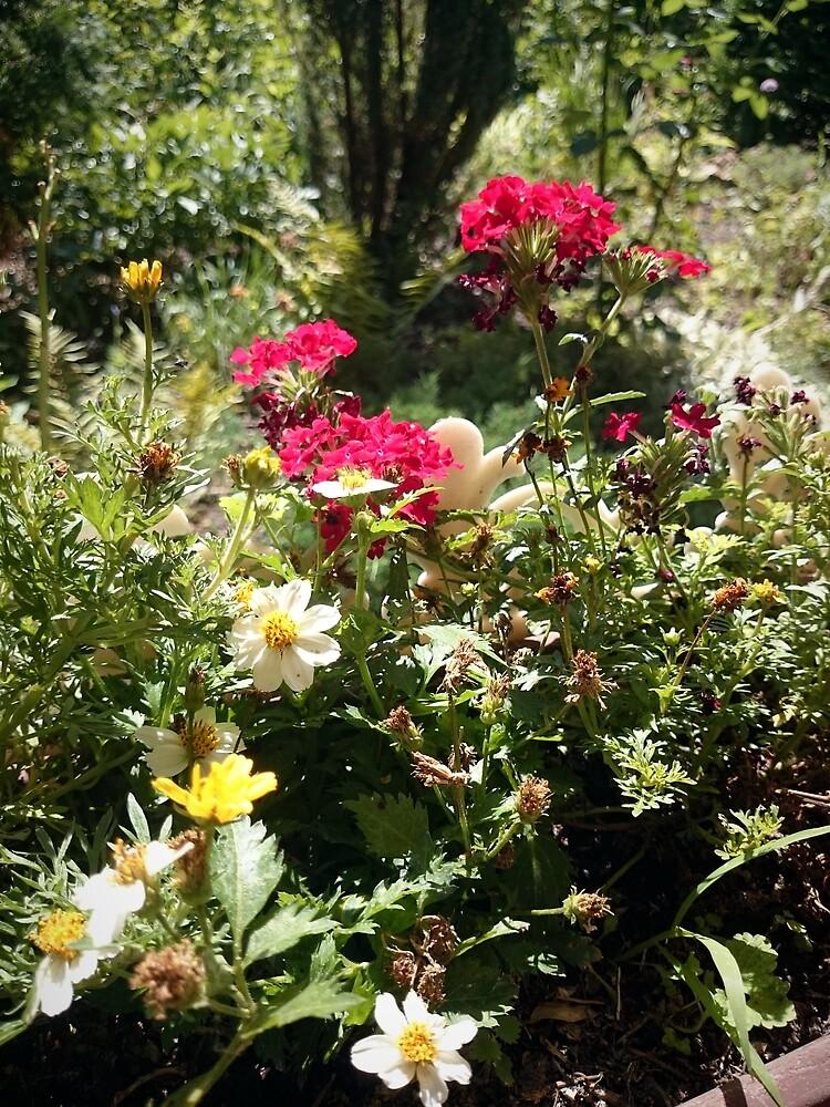 Blumen-Beet von Gourmetkater