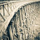 Trestle Bridge Noojee  by Callum Brown