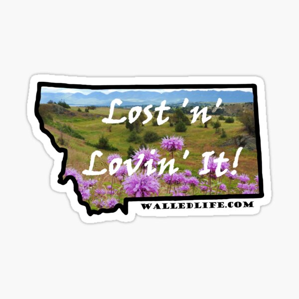 Montana Horsemint and Missions Sticker