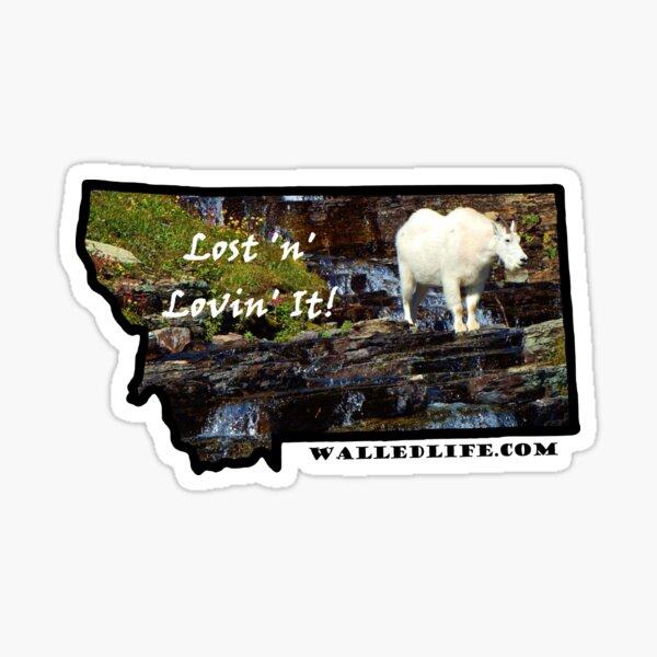 Montana Mountain Goat Sticker