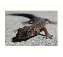 Carpark Gecko Art Print