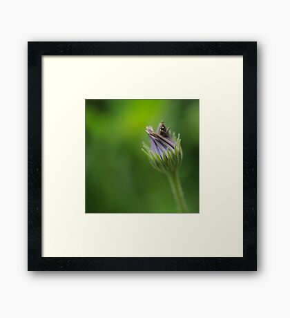 The Power of Simplicity Framed Print
