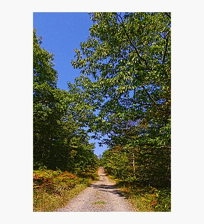 Fire Tower Road Photographic Print