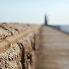 One of those depth of field things :) by Onions