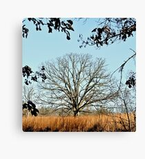 Bearing the Weight of Sky and Clouds.... Canvas Print