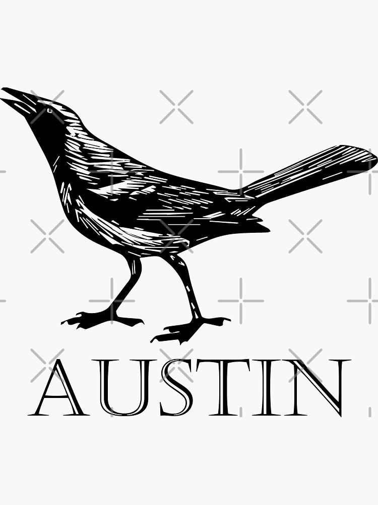 Austin Grackle by willpate