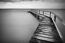 Aquanaut Days by Jim Worrall