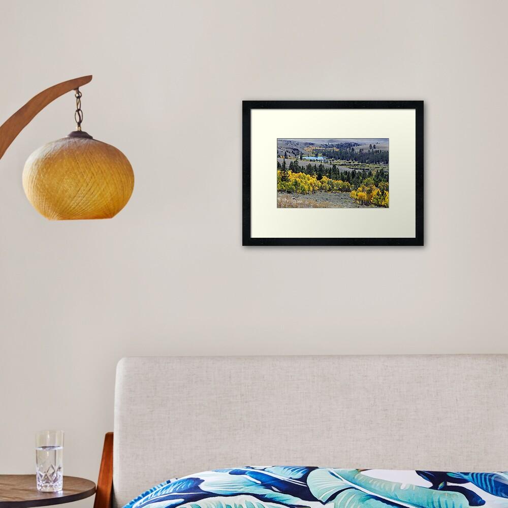 Aspen Gold at South Pass Framed Art Print