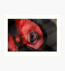 Check out these Eyelashes!!! Art Print