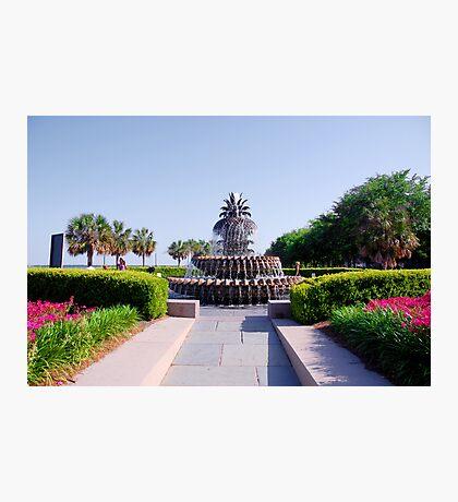 Pineapple Fountain in Charleston Photographic Print