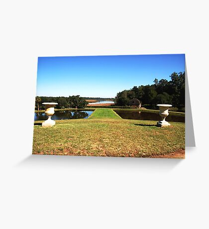 Looking down to the Ashley River - Middleton Place Charleston Greeting Card