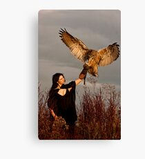 The Owl Returns Canvas Print