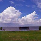 Sunrise Park on James Island, Charleston by Susanne Van Hulst