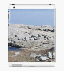 Peggy's Cove, Nova Scotia iPad Case/Skin