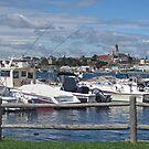 Gloucester Harbor by Monnie Ryan
