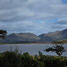 Connemara Hillside by AcePhotography