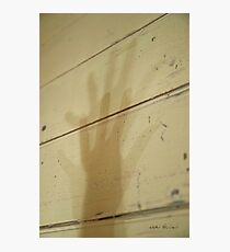Shadow's Shadow © Vicki Ferrari Photographic Print