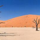 Deadvlei Panorama by Scott Carr
