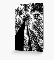 Natures Giants Greeting Card