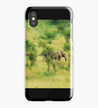lady elephant walk, pilanesburg iPhone Case/Skin