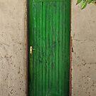 Green door by Angela Ferguson