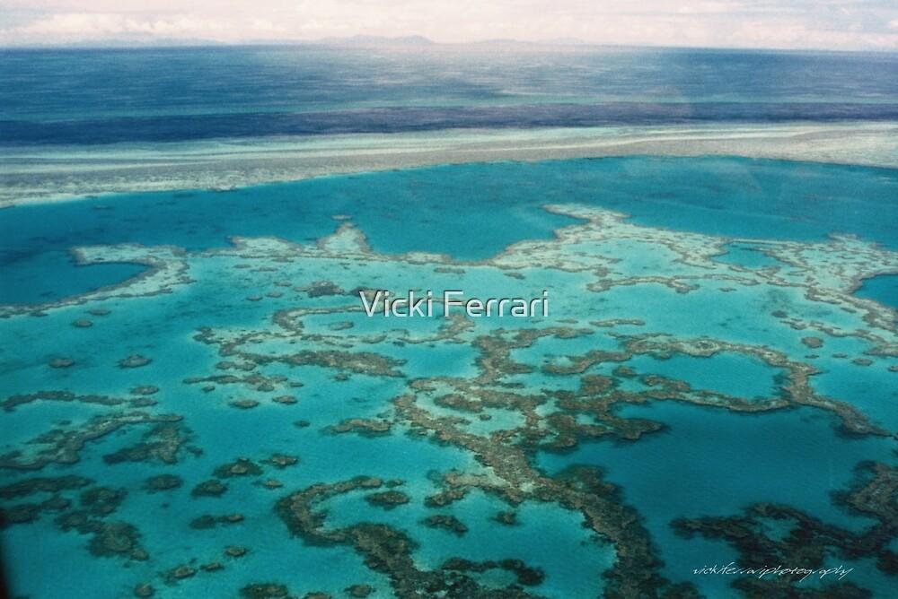Great Barrier Reef © Vicki Ferrari by Vicki Ferrari