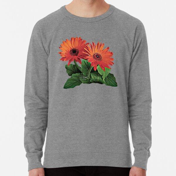 Two Orange Gerbera Daisies Lightweight Sweatshirt
